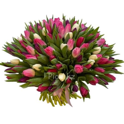 Разноцветные тюльпаны (151 шт.)