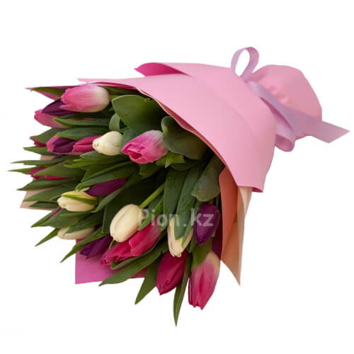 Разноцветные тюльпаны (25 шт.)