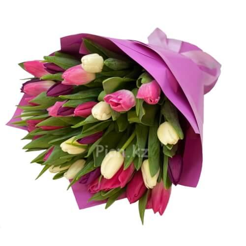 Разноцветные тюльпаны (35 шт.)