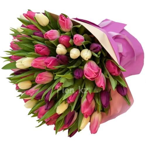 Разноцветные тюльпаны (от 75 шт.)